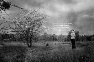 "Foto von Juri Pawlow für das Kunstprojekt ""Johannes Bobrowski - Dichter der Sarmatischen Landschaft"": ""Пики и стрелы, целят в небо, знамена мхов, рощица, что сбежала со склона. Войско. Древнее. Травой рты полны."" (c) Foto: Juri Pawlov"