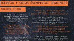 vis_renginia_VIRSELIS