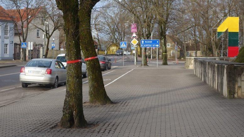 Pjautini medžiai pažymėti raudonomis ir mėlynomis juostomis.