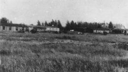 Macikų lagerio vaizdas (1963-1964 m.). ŠHŠM. Pg 5274/45